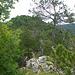 Der Gipfelgrat des Chatzensteg