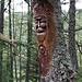 Waldgeister auf dem Weg zur Bergerie del Laux