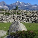 oberhalb Alpe Fumanova > Gran Paradiso
