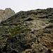 Auch der Normalaufstieg ist knackig (Unterhalb der mittleren felskante sieht man einen Kletterer auf der Normalroute).