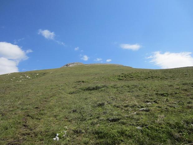 Gipfelgrad