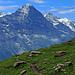 Mit dabei: Eiger & Jungfrau.