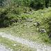 Beginn des Weges Richtung Alp Tros bei P. 1252