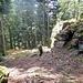 Kurz nach Reitenberg findet man die ersten grossen Felsblöcke an. Hier sind wir ab und zu vom Weg runter um die Felsen näher anzuschauen.