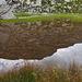 Mein Gipfel spiegelt sich in einem von Wollgras umgebenen Seelein