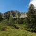 Schöner Rückweg zu unserem Ausgangspunkt, mit Rückblick zum Mont d'Or