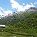 Alp Muot Selvas