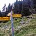 Alpe della Bolla