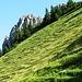 Ancora l Sebenspitze che spunta dai ripidi pascoli della Sebenalpe.