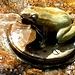 Dieses Bild habe ich noch im Fundus gefunden... dieser steht in Faido am Bahnhof.... Bild August 2012. Dazu gesellt sich das Coca-Cola-Fröschli in der [http://www.hikr.org/gallery/photo554946.html?post_id=38656#1 Areuse]-Schlucht!