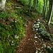 Schöner Weg auf Alpeel