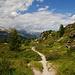 Wunderschöner Wanderweg zum Hahnensee