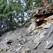 felsdurchsetzte Waldabschnitte 2