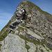 Aufstieg zur Gauschla, sieht hier wilder aus als es ist.<br /><br />Foto von paul_sch
