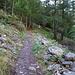 Aufstiegsweg, alles viel steiler als auf dem Bild
