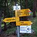 die provisorischen Schilder zur neuen Brücke