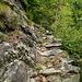 Der alte Alpweg auf die Alpe Ribia.