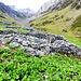 Ruderi all'Alpe Scaradra