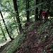 lauschig-anregender Abstieg zum Hornbach