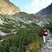 Zuerst geht's auf einem guten Wanderweg (T2) am See, Velicke pleso, entlang und die Geländestufe im Hintergrund hoch. Der Bergführer hat gleich ein strammes Tempo vorgelegt (viel höher als ich es von den Alpen gewohnt bin, wo man ja gerade zu Beginn betont langsam geht).