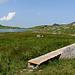 Brücken, welche über die Sumpfgebiete führen.