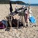 ............casetta sulla spiaggia 2 .....