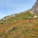 """Aufstieg durch die vernässte und mit Löchern und Steinen durchsetzte Flanke oberhalb """"Grosse Wang"""""""