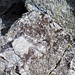 Kleine Quarzkristalle auf einem Granitblock