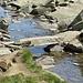 originelle Brücke über den Abfluss des Tomasees als Vorderrhein