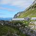 Die Alp Grueb