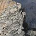 Es geht direkt vom Punkt 2826 hinauf, wo der Weg auf den Piz Beverin den Grat schneidet.