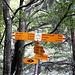 Il bivio al tornante, si segue per Alpe Leven