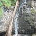 Baumstamm und Wasserfall vereint