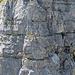 Klettersteiggeher am Hinteren Eggstock. Es sieht spektakulär aus.