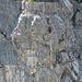 Klettersteiggeher am Hinteren Eggstock