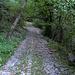 Der Weg ab Rovio ist breit...