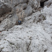 Stopselzieher, für alpine Verhältnisse ein Komfort-Abstiegsweg