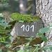 """So, los geht' s von der Brandenberger Hütte über die Straße direkt den Wald zum Gurneck hinauf. <br />Am """"Einstieg"""" hängt auch ein Nistkasten mit der Nummer 101. Ordnung muß sein!"""