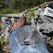 """Unter mir der morsche, heruntergefallene Querbalken des Gipfelkreuzes. Auch mein """"Material"""" hat gelitten ( das T-Shirt hat noch schlimmer ausgesehen).<br /> Zwischenmenschliche """"Schlüsselstelle"""" des Tages war dann auf der Tutzinger Hütte eine Tagesausflüglerin, die mir bei meiner Ankunft dort weithin hörbar zugerufen hat: """"Ach Gott! Sind sie hingefallen?""""<br />"""