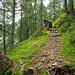 Auf dem Weg zur Capanna Campo Tencia. Hier schon in der Geländestufe wo am meisten Höhenmeter gewonnen werden.
