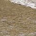 Vom Wasser geprägte Strukturen im sandigen Boden