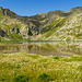 Lago di Morghirolo mit viel Wollgras