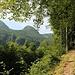 unterwegs auf Waldsteigen