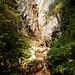 malerisch-wilder Bachverlauf im Abstieg zum oberen Bleikigraben ...