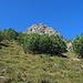 über diese steile Wiese, die immer steiler wird, bin ich bis zu den Felsen hinauf gestiegen.
