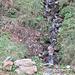 Anfänge der Cassarate