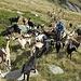 1) Tra caproni ci si intende ... 2) A intenditor ... pochi caproni ... 3) Il Mosè delle capre ...  Date il vostro voto ...