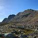 Karge Bergmatten und Geröllfelder wechseln sich ab.