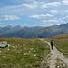 ... vor einem alpine Bergmatten.