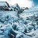 Ich habe Pickel und Steigeisen mit hochgeschleppt und mache noch einen kleinen Spaziergang auf dem zerschrundenen Gletscher. Es lagen maximal 1-2 cm Schnee, alle Spalten waren zu sehen. Ausrutschen ist allerdings verboten.